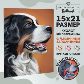 """Алмазная вышивка с частичным заполнением """"Собака"""", 15 х 21 см"""