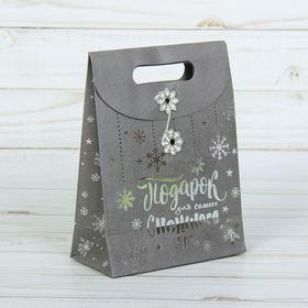 Пакет подарочный «Подарок для теплого настроения», 12 × 16 × 6 см Ош