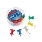Кнопки силовые большие цветные 15 штук в пластиковой коробке CALLIGRATA