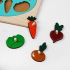 Рамка-вкладыш «Фрукты и овощи», 16 деталей - Фото 2