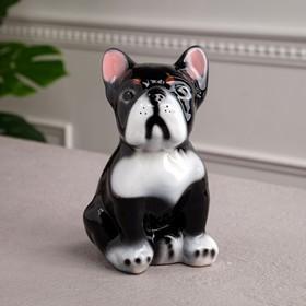 Копилка 'Французский бульдог', глянец, чёрный цвет, 19 см Ош