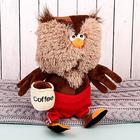 Мягкая игрушка «Сова & Coffee», 25 см