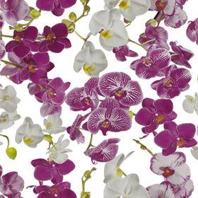 Клеёнка столовая Wondertex «Орхидеи», ширина 140 см, рулон 20 м