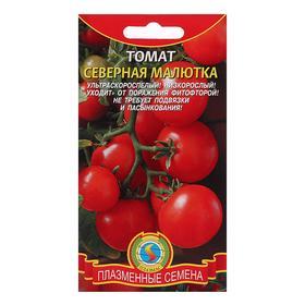 """Семена Томат """"Северная малютка"""", ультраскороспелый, низкорослый, 20 шт"""
