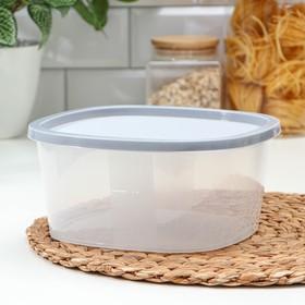 Контейнер пищевой ИскраПласт BioFresh, 2,65 л, квадратный, цвет МИКС