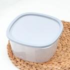 Контейнер пищевой BioFresh, 2,65 л, квадратный, цвет МИКС - Фото 2