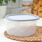 Контейнер пищевой BioFresh, 2,65 л, квадратный, цвет МИКС - Фото 3