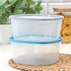Контейнер пищевой BioFresh, 2,65 л, квадратный, цвет МИКС - Фото 5