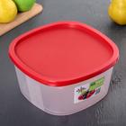 Контейнер пищевой BioFresh, 2,65 л, квадратный, цвет МИКС - Фото 6