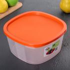 Контейнер пищевой BioFresh, 2,65 л, квадратный, цвет МИКС - Фото 7
