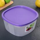 Контейнер пищевой BioFresh, 2,65 л, квадратный, цвет МИКС - Фото 8