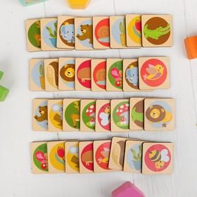 Развивающая игра «Мемори» фишка: 4,6 × 4,6 см Ош