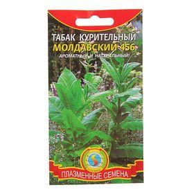 Семена Табак курительный 'Молдавский 456', 0,02 г Ош