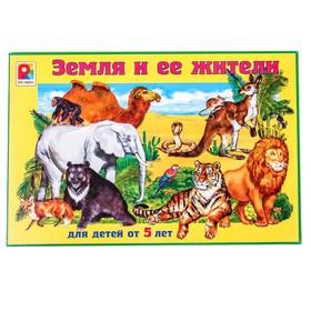 Игра «Земля и её жители»