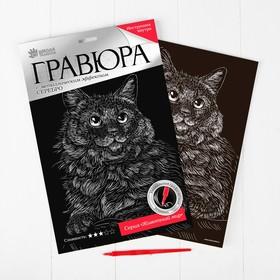 Гравюра «Сибирская кошка» с металлическим эффектом серебра А4 Ош