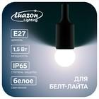 Лампа светодиодная декоративная, G45, Е27, 1,5 Вт, для белт-лайта, белый, фасовка по 50 штук
