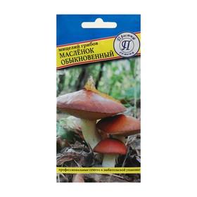 Мицелий грибов Маслёнок обыкновенный, 50 мл Ош