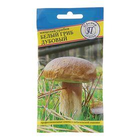Мицелий Белый гриб дубовый, 50 мл Ош