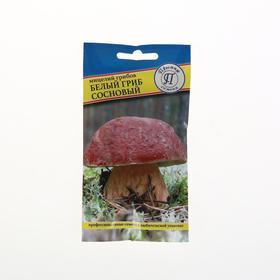 Мицелий Белый гриб сосновый, 50 мл Ош