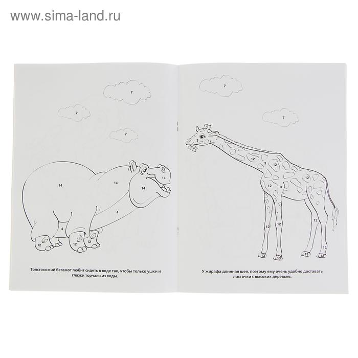 Раскраска по номерам «Зоопарк» (2798617) - Купить по цене ...