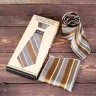 Подарочный набор: галстук и платок