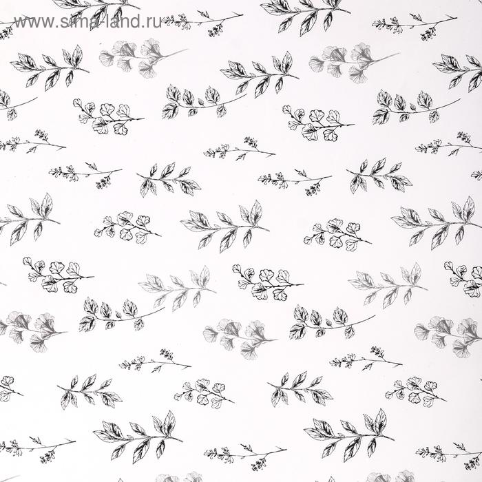 "Бумага упаковочная глянцевая ""Черно-белые листья"", 70 х 100 см"