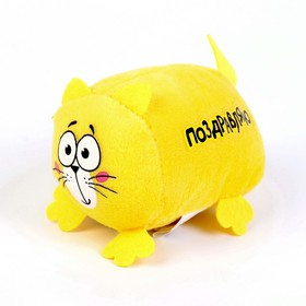Мягкая игрушка Котэ «Поздравляю»