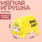 Мягкая игрушка Котэ «Приношу счастье»