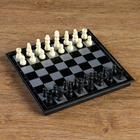 Шахматные фигуры, высота короля 3.8 см, пешки 1.9 см, пластик, чёрно-белые, в пакете