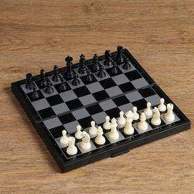 Настольная игра, набор 3в1 'Зук': нарды, шахматы, шашки, магнитная доска 24.5х24.5 см Ош