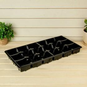 Поддон для рассады, 50 × 25 × 5 см Ош