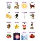 Обучающие логопедические карточки «Говорим буквы С и З», размер карточек 63 × 87 мм - Фото 2