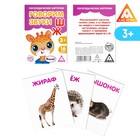Обучающие логопедические карточки «Говорим буквы Ш и Ж» - Фото 1