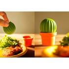 Набор для специй Cactus - Фото 4