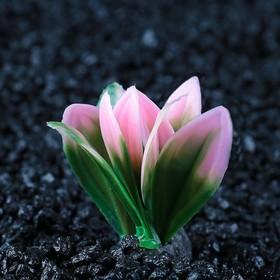 Растение искусственное аквариумное малое, 5 см Ош