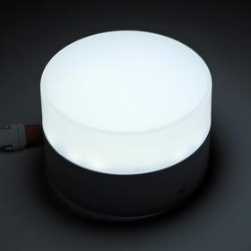 Накладной светодиодный светильник Luazon, круглый, 90х55 мм, 6 Вт, 550 Лм, 6500 К Ош