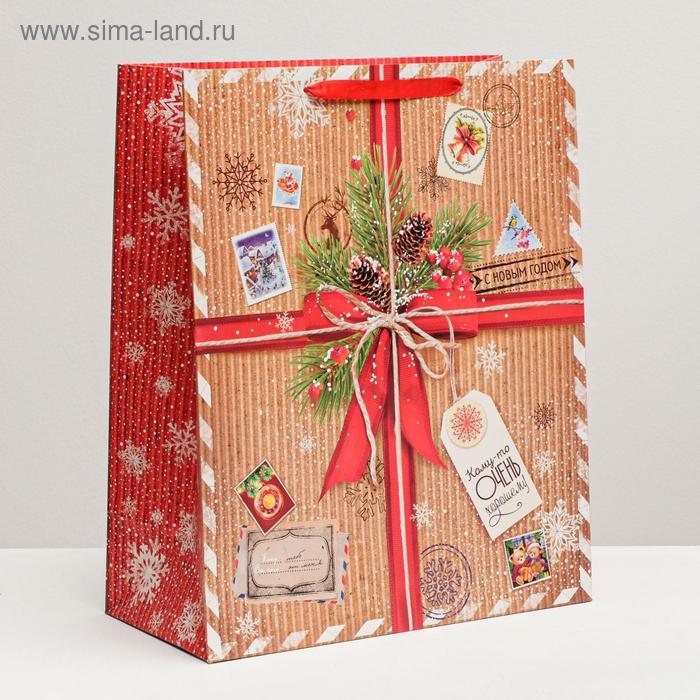 Пакет ламинированный XL «Кому-то очень хорошему», 40 × 49 × 19 см