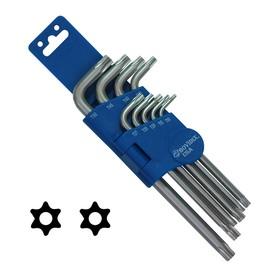 Набор ключей BOVIDIX 5980409, TORX TAMPER (TT10,TT15,TT25,ТT27, TT30,TT40, ТT45, ТT50)