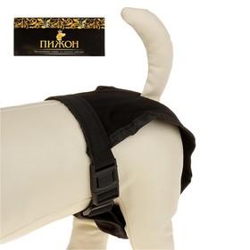 Трусы для собак с 3 сменными вкладышами, размер XL (талия 60-70 см) Ош