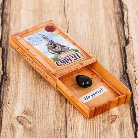 Магнит-спичечный коробок «Сургут» Ош