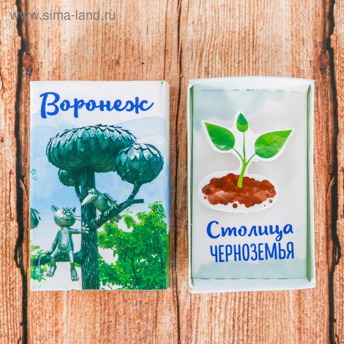 Магнит-спичечный коробок «Воронеж»