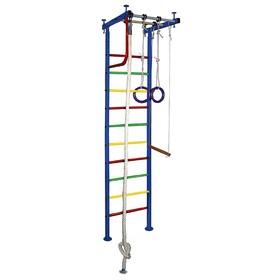 Детский спортивный комплекс Вертикаль № 1, 540 × 650 × 2500-3000 мм