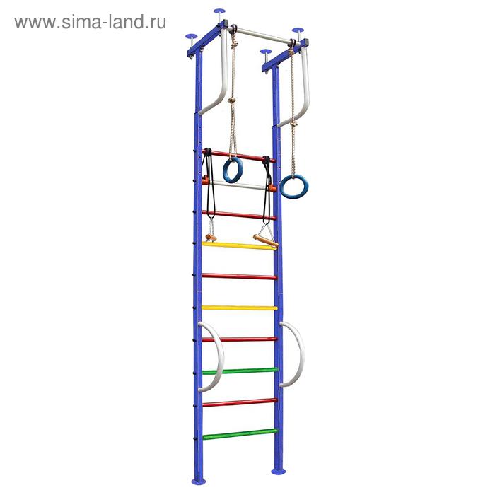 Детский спортивный комплекс Вертикаль № 3, 540 × 450 × 2500-3000 мм