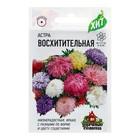 """Семена цветов Астра """"Восхитительная"""", смесь, О, 0,3 г"""