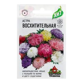 Семена цветов Астра 'Восхитительная', смесь, О, 0,3 г Ош
