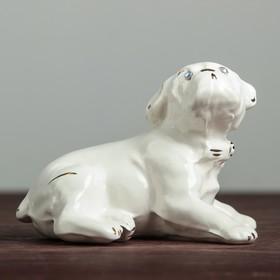 Сувенир 'Собака Бульдог' 9 см, белый Ош