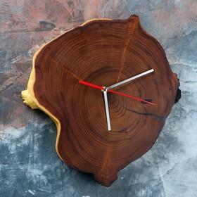 Часы настенные 'Спил оливы', 35 х 30 см, микс Ош