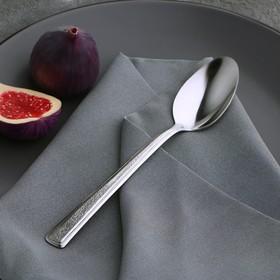 Ложка столовая Доляна «Пулкин», h=19,2 см