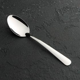 Ложка столовая Доляна «Нордик», 17 см, толщина 1,2 мм