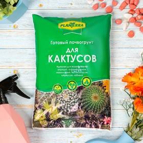 купить Почвогрунт PlanTerra для кактусов, 2,5 л